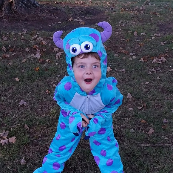 Disney Costumes Sulley Monsters Inc Toddler Costume Poshmark